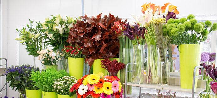 Доставка цветов по Шарлотту